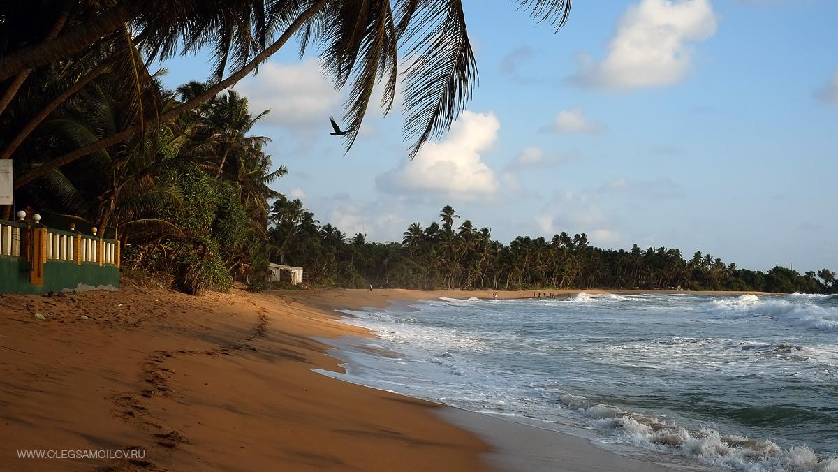 Шри-Ланка 2013 – Наше первое путешествие на остров Шри-Ланка